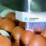 大氣電漿刷刷刷,雞蛋表面細菌殺光光