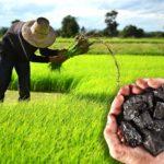 【科技農業】農、工結盟 三招打造循環農業生態系