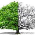 資源「可再生、再利用、可回復」 讓產業環境共生