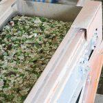 奈米玻璃吸附材料再創環保新商機