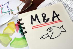 企業透過併購壯大已是現今發展顯學