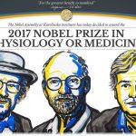 重振基礎科學研究,生物時鐘基因發現者獲諾貝爾醫學獎